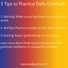 daily gratitude chips