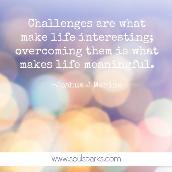 Challenges are what make life interestin