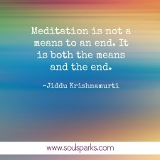 Meditation is not a means to an end. It is both the means and the end. ~Jiddu Krishnamurti